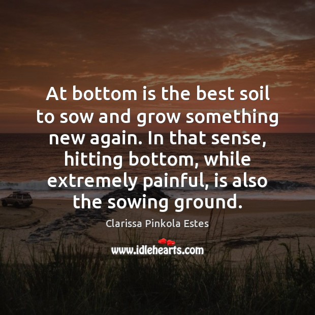 At bottom is the best soil to sow and grow something new Clarissa Pinkola Estes Picture Quote