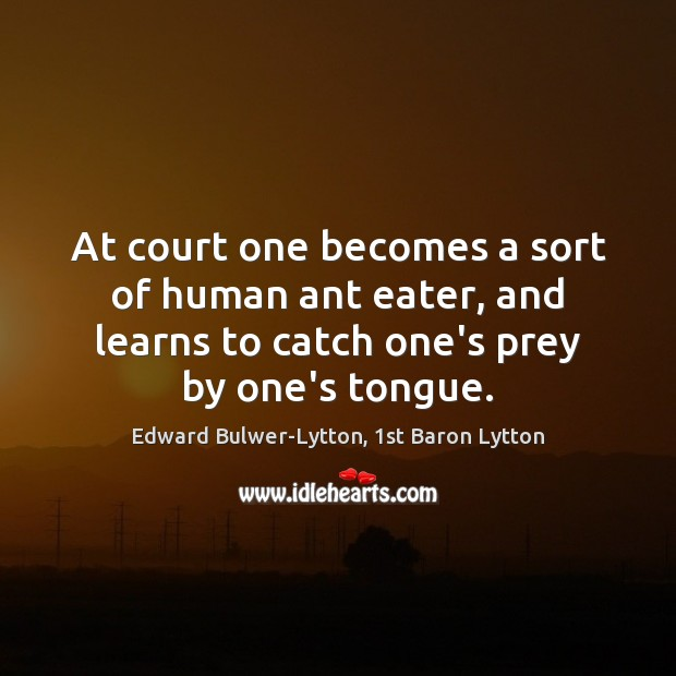 Image, At court one becomes a sort of human ant eater, and learns
