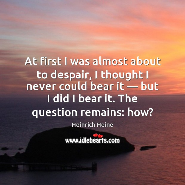At first I was almost about to despair, I thought I never Heinrich Heine Picture Quote