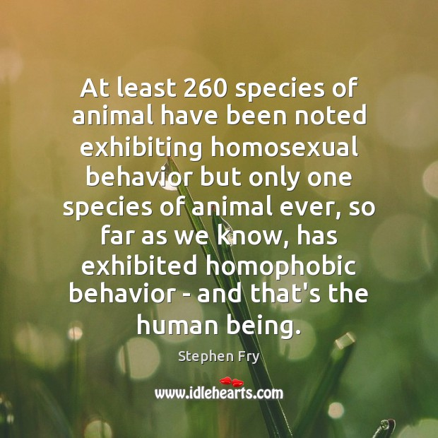 Image, At least 260 species of animal have been noted exhibiting homosexual behavior but