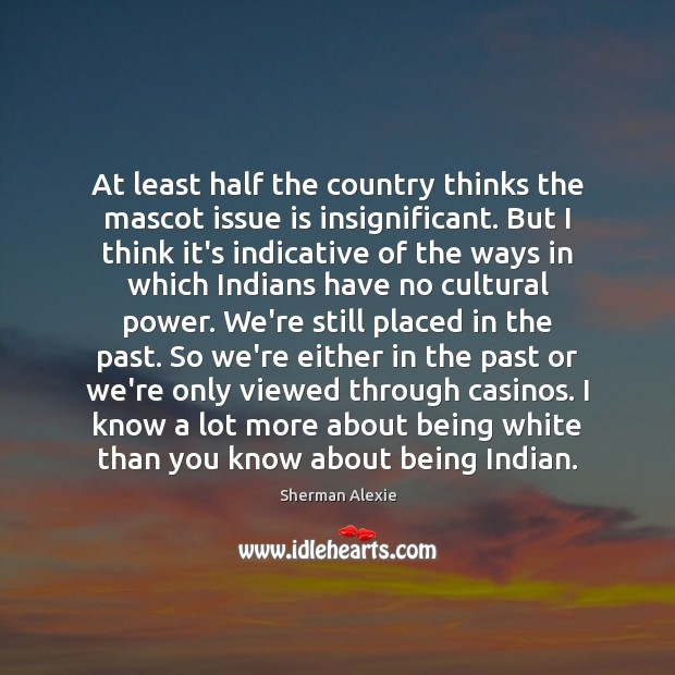 At least half the country thinks the mascot issue is insignificant. But Sherman Alexie Picture Quote