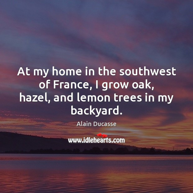 Image, At my home in the southwest of France, I grow oak, hazel, and lemon trees in my backyard.