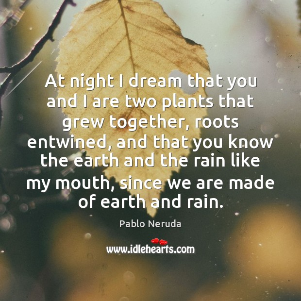 Image, At night I dream that you and I are two plants that