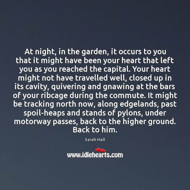 At night, in the garden, it occurs to you that it might Image
