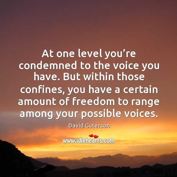 At one level you're condemned to the voice you have. Image