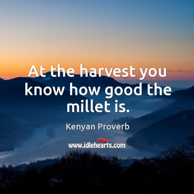 At the harvest you know how good the millet is. Kenyan Proverbs Image