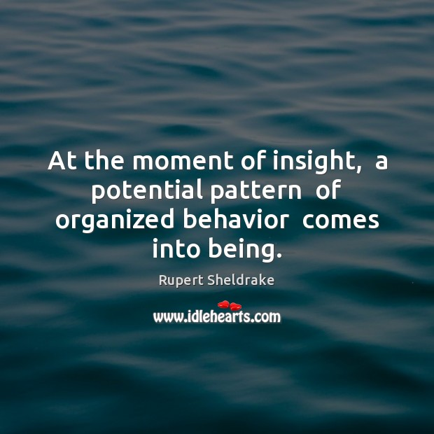 At the moment of insight,  a potential pattern  of organized behavior  comes into being. Rupert Sheldrake Picture Quote