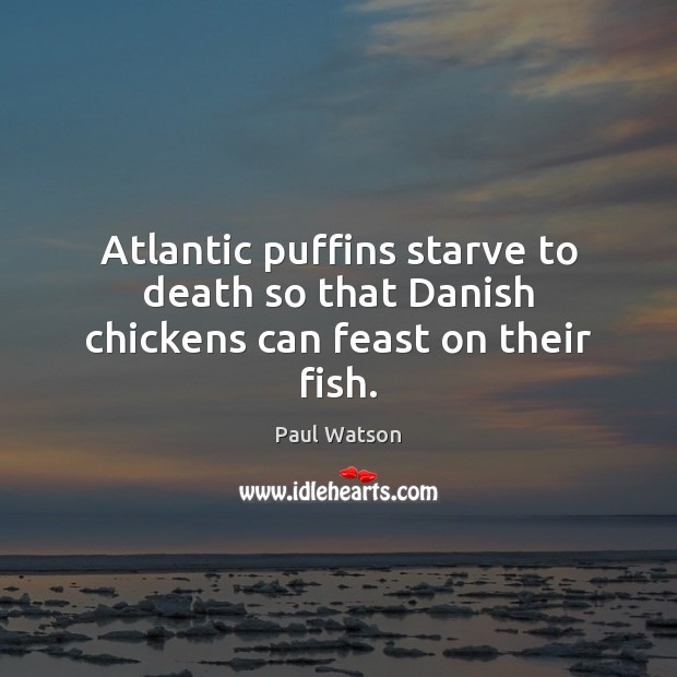 Atlantic puffins starve to death so that Danish chickens can feast on their fish. Paul Watson Picture Quote