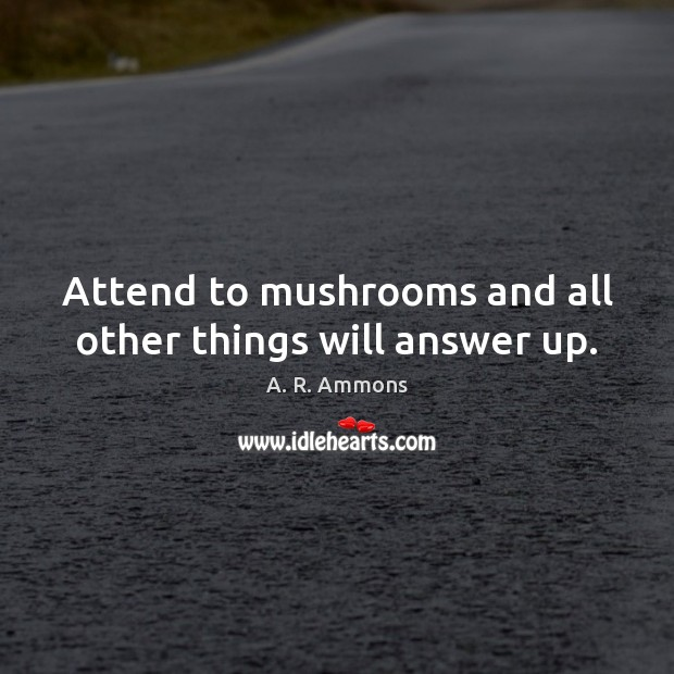 Image, Attend to mushrooms and all other things will answer up.