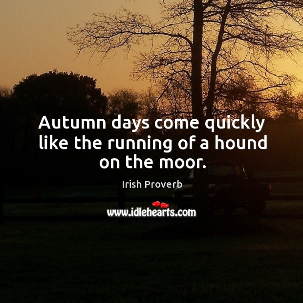 Autumn days come quickly like the running of a hound on the moor. Irish Proverbs Image