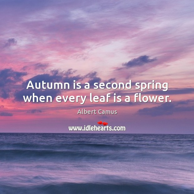 Autumn is a second spring when every leaf is a flower. Image