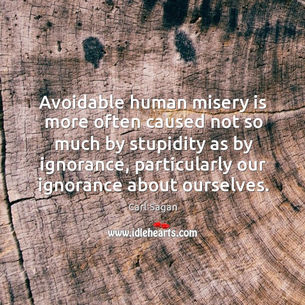 Image, Avoidable human misery is more often caused not so much by stupidity