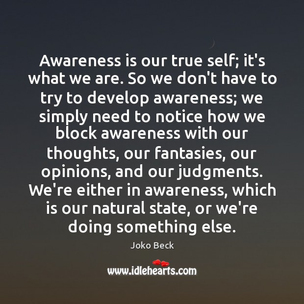 Image, Awareness is our true self; it's what we are. So we don't