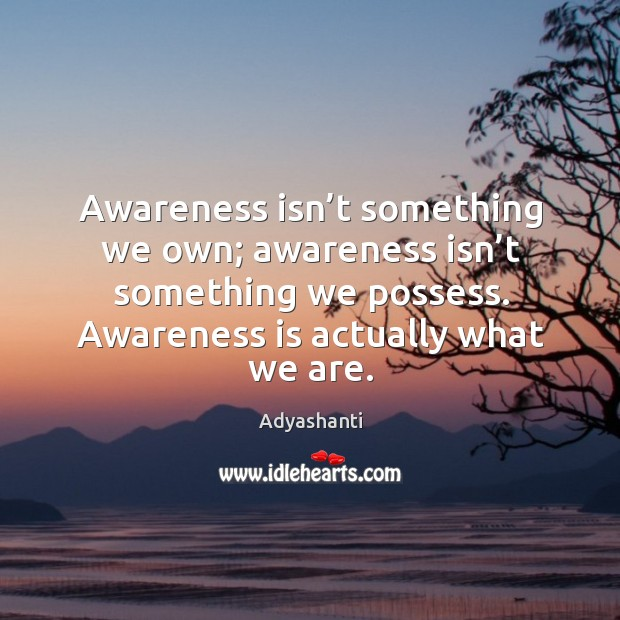 Image, Awareness isn't something we own; awareness isn't something we possess.