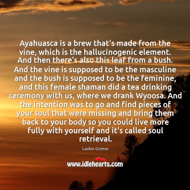 Image, Ayahuasca is a brew that's made from the vine, which is the