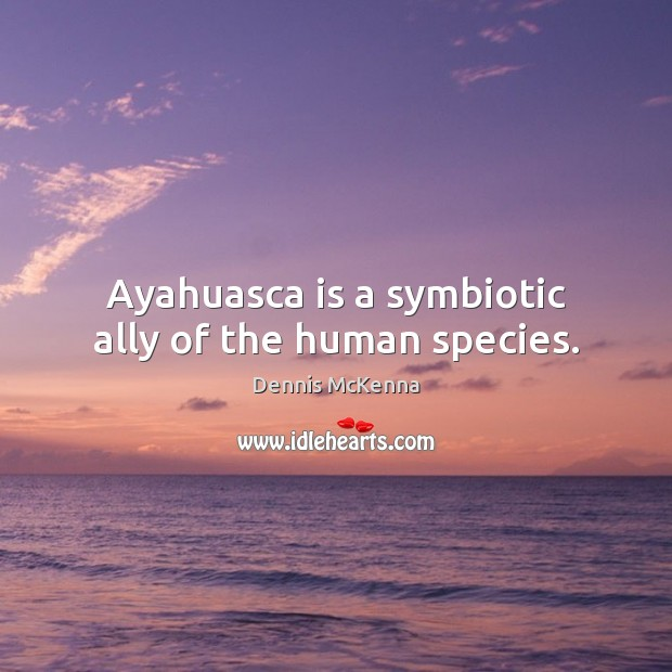 Image, Ayahuasca is a symbiotic ally of the human species.