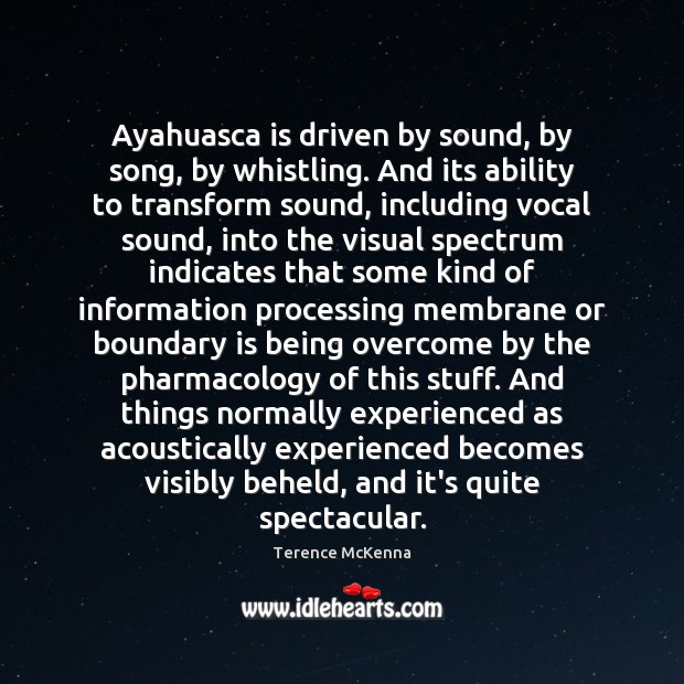 Image, Ayahuasca is driven by sound, by song, by whistling. And its ability