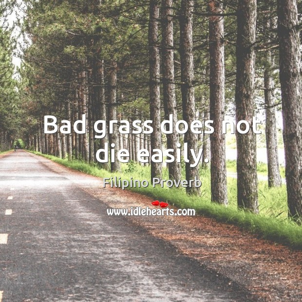 Bad grass does not die easily. Filipino Proverbs Image