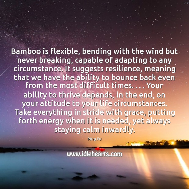 Image, Bamboo is flexible, bending with the wind but never breaking, capable of