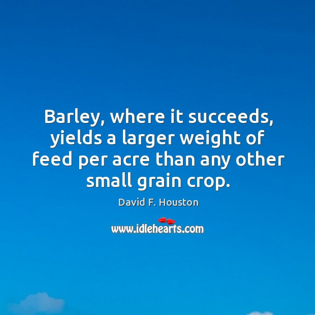 Image, Barley, where it succeeds, yields a larger weight of feed per acre than any other small grain crop.