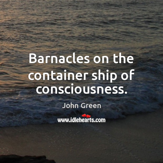 Image, Barnacles on the container ship of consciousness.