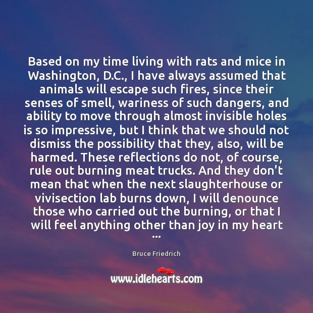 Image, Based on my time living with rats and mice in Washington, D.