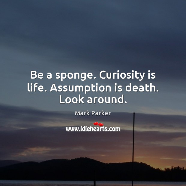 Be a sponge. Curiosity is life. Assumption is death. Look around. Image