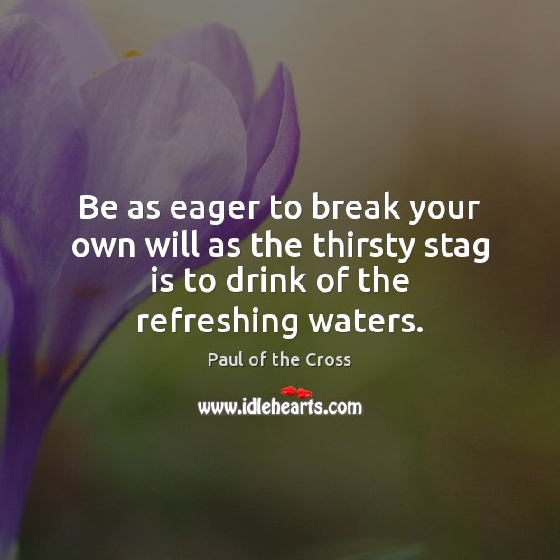 Be as eager to break your own will as the thirsty stag Paul of the Cross Picture Quote