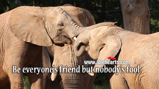 Be everyone's friend but nobody's fool. Fools Quotes Image