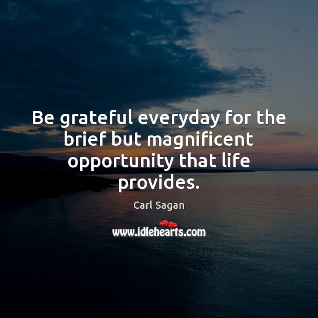 Image, Be grateful everyday for the brief but magnificent opportunity that life provides.
