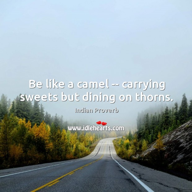 Image, Be like a camel — carrying sweets but dining on thorns.