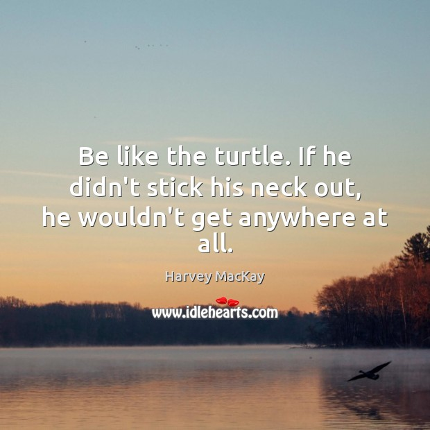 Be like the turtle. If he didn't stick his neck out, he wouldn't get anywhere at all. Harvey MacKay Picture Quote