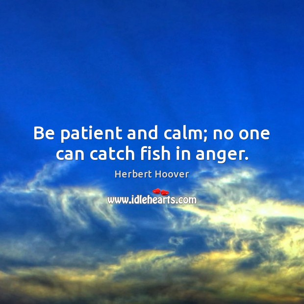 Be patient and calm; no one can catch fish in anger. Herbert Hoover Picture Quote