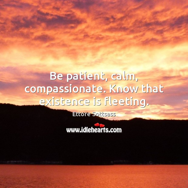 Be patient, calm, compassionate. Know that existence is fleeting. Patient Quotes Image