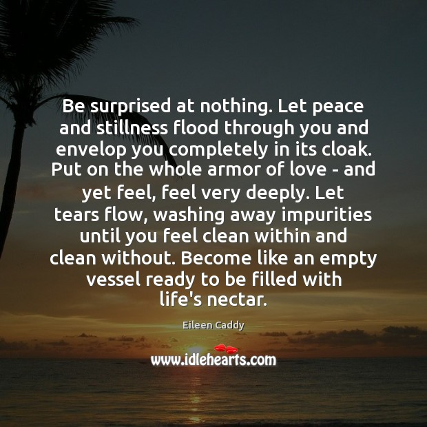 Be surprised at nothing. Let peace and stillness flood through you and Image