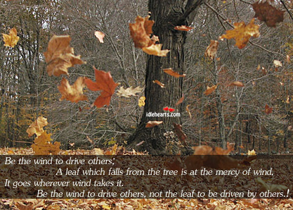 Be The Wind To Drive Others; A Leaf Which Falls From The…