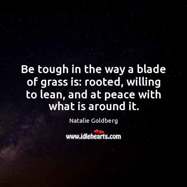 Image, Be tough in the way a blade of grass is: rooted, willing