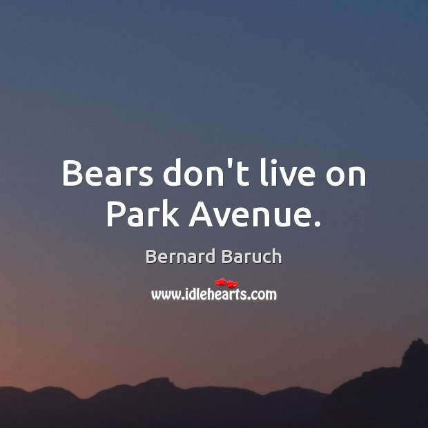 Image, Bears don't live on Park Avenue.