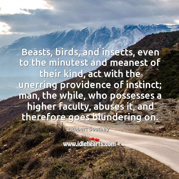 Image, Beasts, birds, and insects, even to the minutest and meanest of their