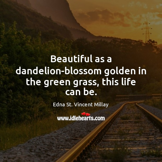 Beautiful as a dandelion-blossom golden in the green grass, this life can be. Edna St. Vincent Millay Picture Quote