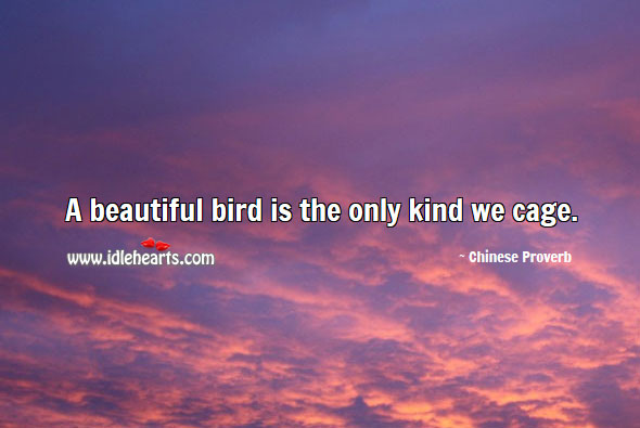 Image, A beautiful bird is the only kind we cage.