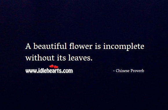 Image, A beautiful flower is incomplete without its leaves.