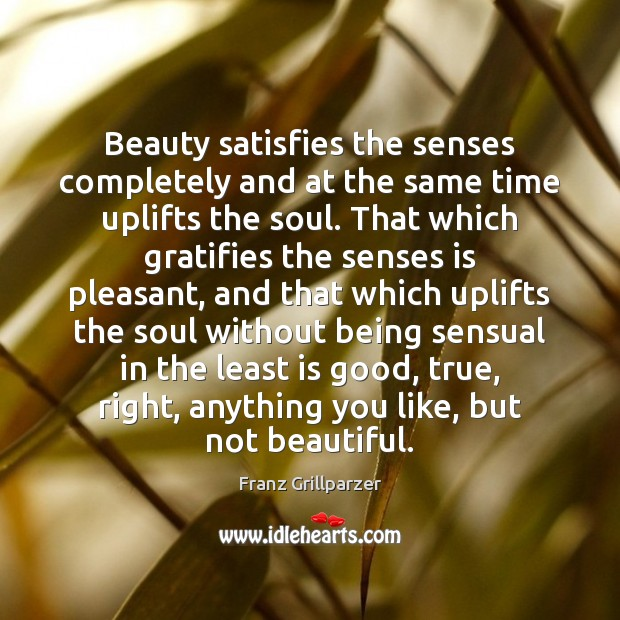 Beauty satisfies the senses completely and at the same time uplifts the Franz Grillparzer Picture Quote