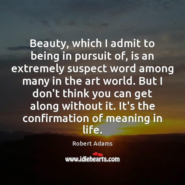 Beauty, which I admit to being in pursuit of, is an extremely Robert Adams Picture Quote