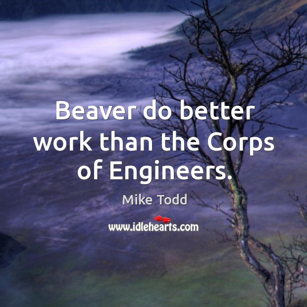 Beaver do better work than the Corps of Engineers. Mike Todd Picture Quote