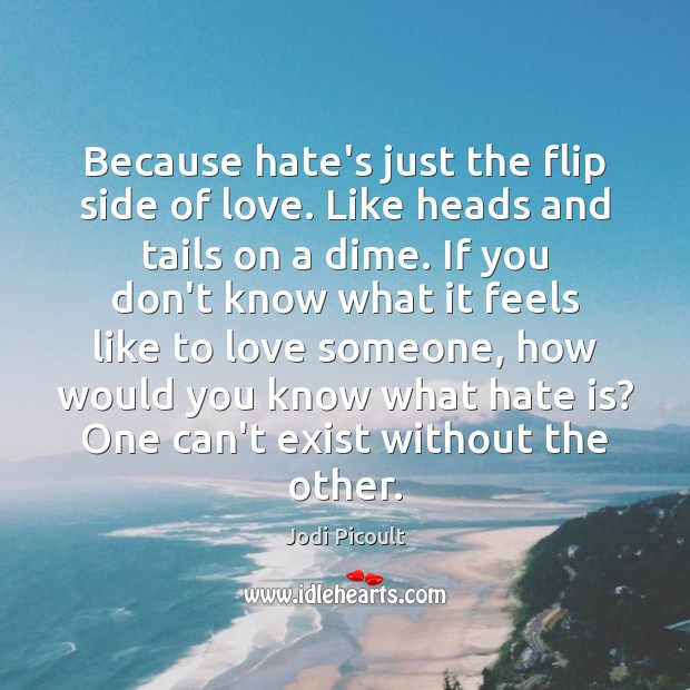 Because hate's just the flip side of love. Like heads and tails Image