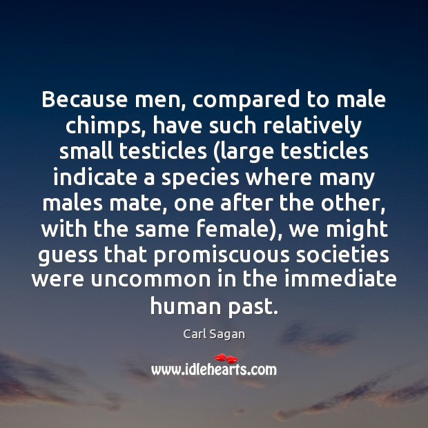 Image, Because men, compared to male chimps, have such relatively small testicles (large