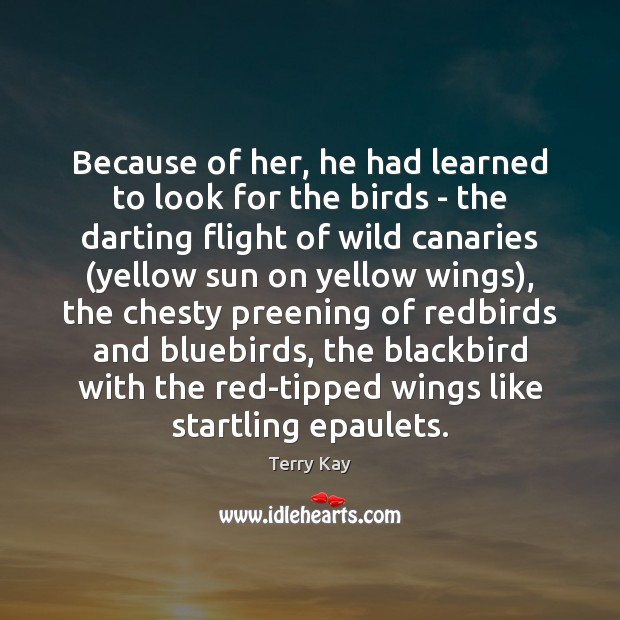 Because of her, he had learned to look for the birds – Image