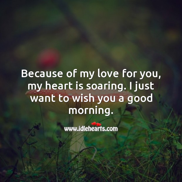 Because of my love for you, my heart is soaring. Good Morning. Heart Quotes Image