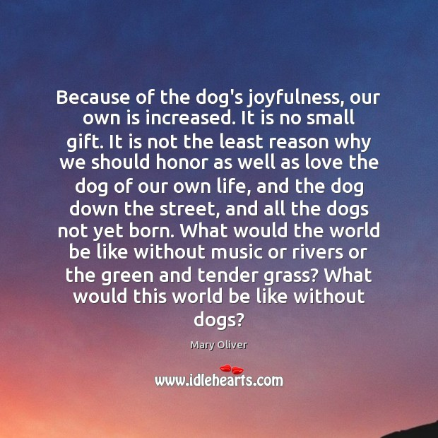 Because of the dog's joyfulness, our own is increased. It is no Image